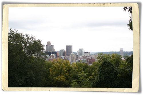 Mount-Adams-view
