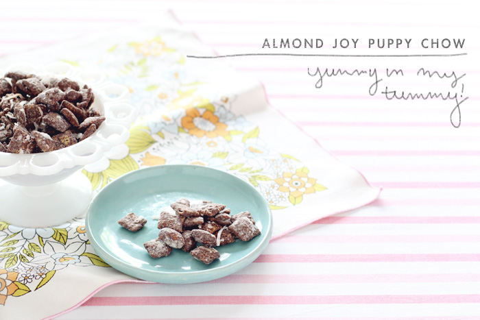 Almond-joy-puppy-chow-2